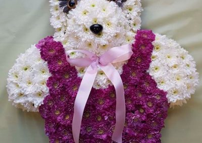 50-web-tribute-teddy-purple